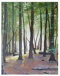 the glow in cypress woods - 16x20.jpg